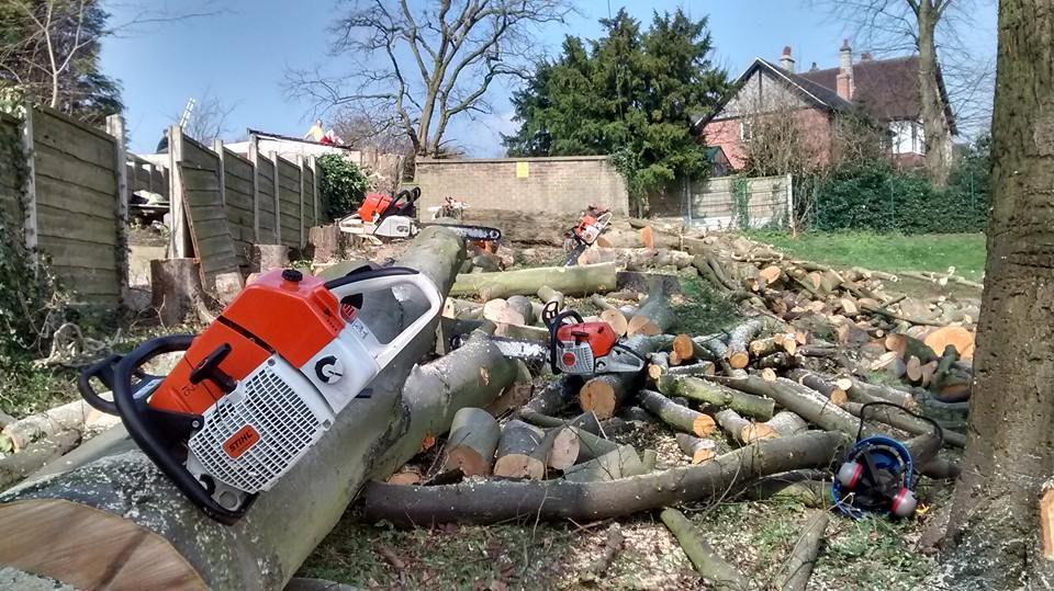 Full Tree Removal & Site Clearances